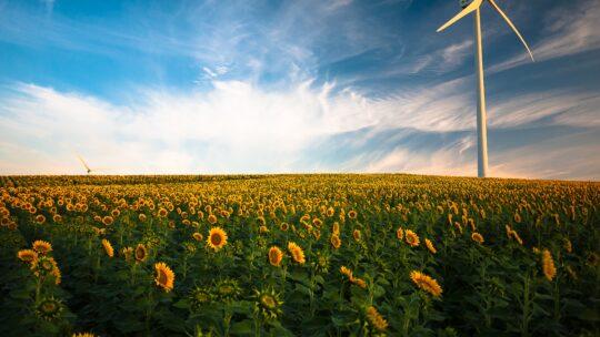Få energioptimeret hjemmet – for klimaet og pengepungens skyld