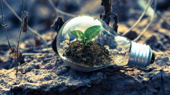 Vær med til at skabe en grønnere fremtid