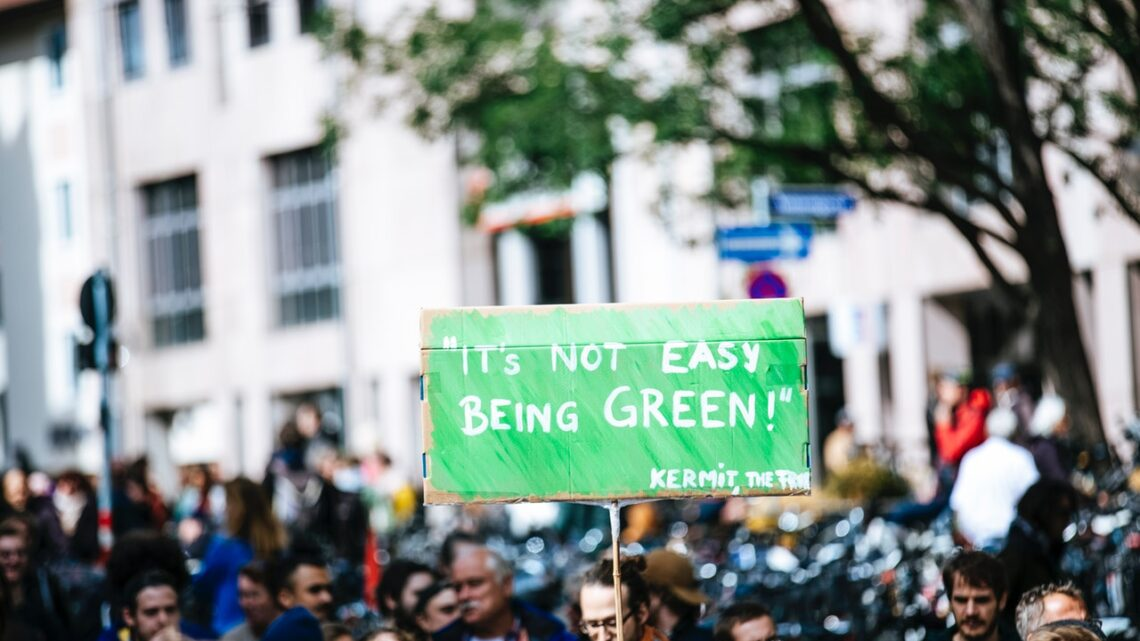 Investér i miljøet – gode tips