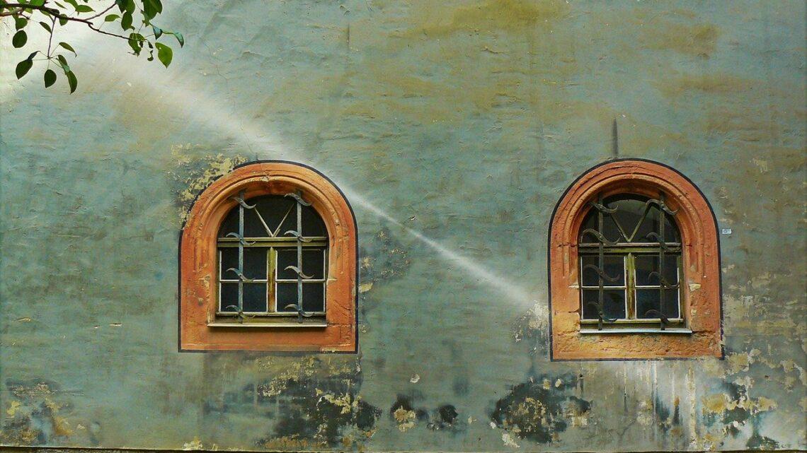 Opgrader husets facade med miljøvenlig algebehandling