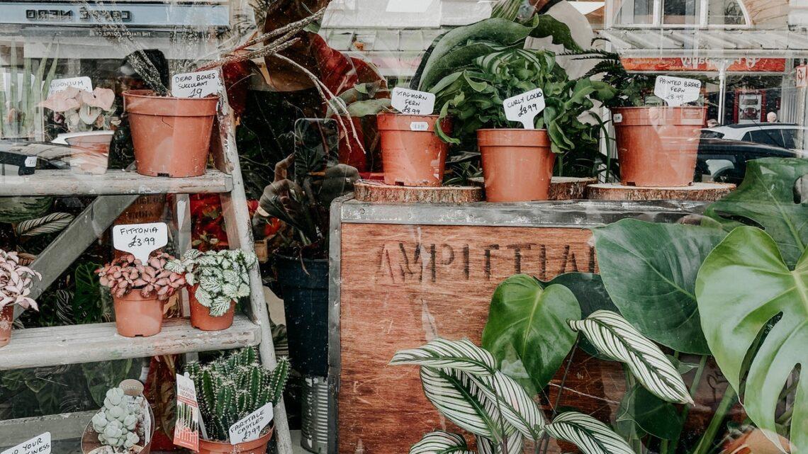 Århus er en miljøvenlig by, der er et besøg værd