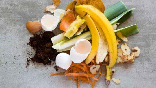 Bæredygtig kompostering i byen – sådan omdanner du selv dit grønne affald til kompost