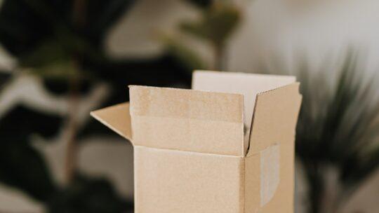 Miljøbevidst afsendelse af pakker til udlandet